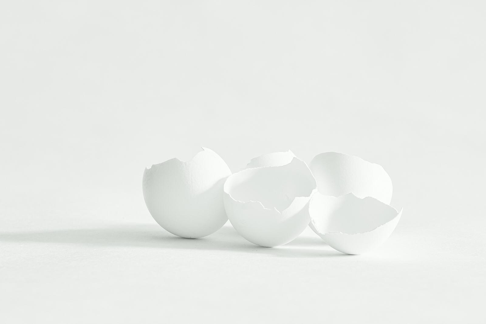 Eggshells-portrait-5